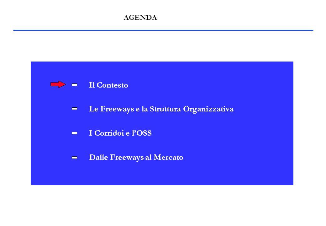 IL CONTESTO Il Libro Bianco di Kinnock Stato di Attuazione delle Direttive 440/91, 18 e 19/95 - Perdita quote di mercato - Strategie per rivitalizzare le ferrovie Anticipazione del libero accesso su alcune direttrici chiave dellEuropa: le Freeways