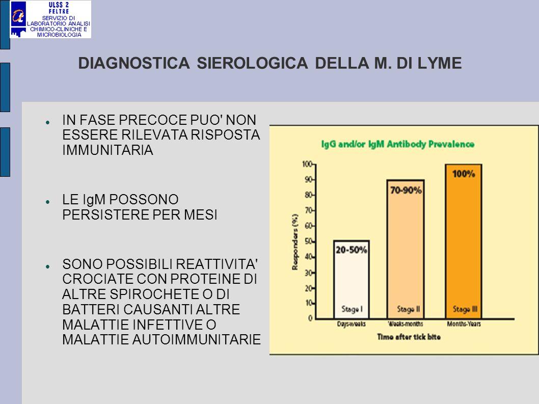 RICERCA ANTICORPI METODO IN CHEMILUMINESCENZA BASATO SU Ag IMMUNODOMINANTI - aumento sensibilità diagnostica - specificità più elevata rispetto a lisati di corpi batterici; sono infatti presenti le seguenti proteine: IgG: VIsE (variable major protein-like sequence, expressed) IgM: Osp C Ag prodotti con TECNICHE RICOMBINANTI - riduzione reattività crociata con altre spirochete
