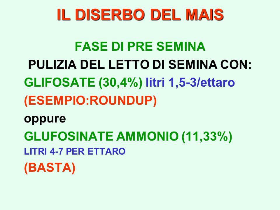 IL DISERBO DEL MAIS FASE DI PRE SEMINA PULIZIA DEL LETTO DI SEMINA CON: GLIFOSATE (30,4%) litri 1,5-3/ettaro (ESEMPIO:ROUNDUP) oppure GLUFOSINATE AMMO
