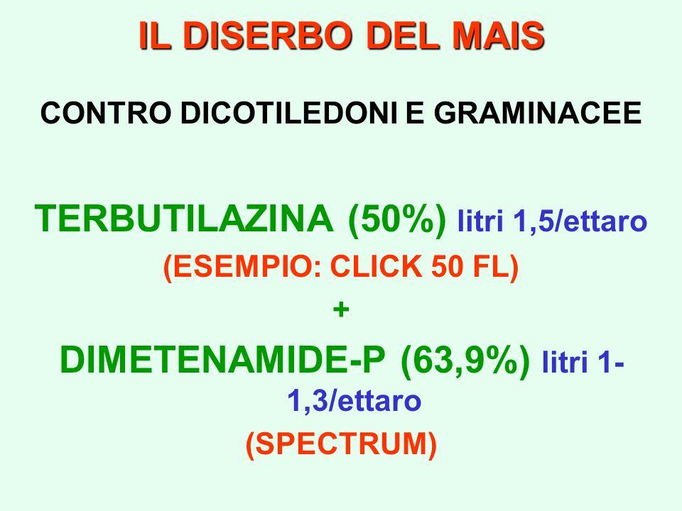 IL DISERBO DEL MAIS CONTRO DICOTILEDONI E GRAMINACEE TERBUTILAZINA (50%) litri 1,5/ettaro (ESEMPIO: CLICK 50 FL) + DIMETENAMIDE-P (63,9%) litri 1- 1,3