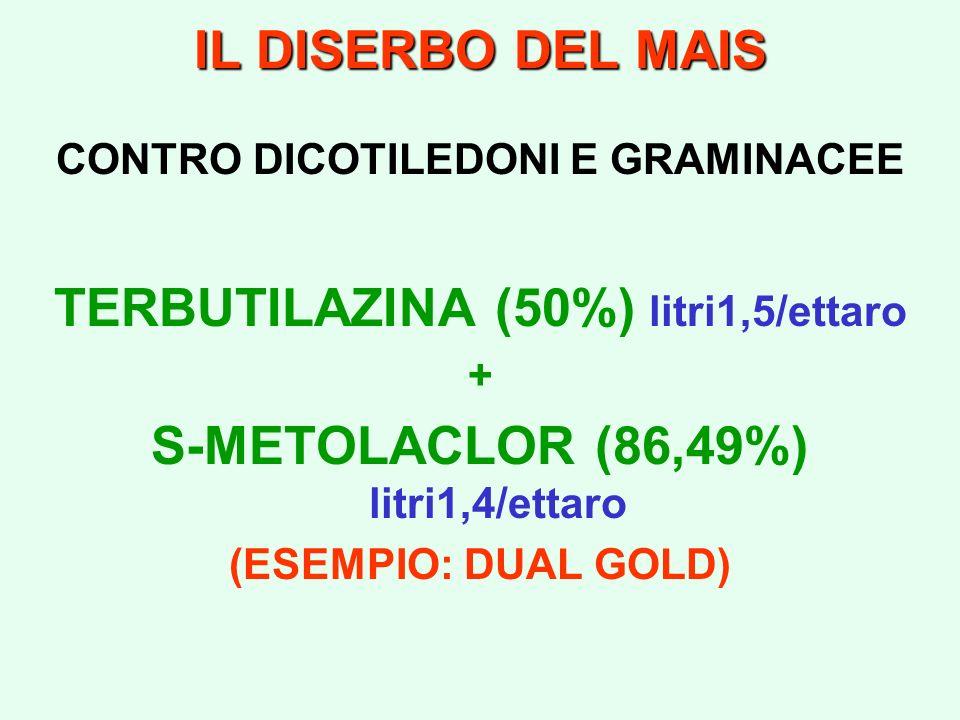 IL DISERBO DEL MAIS CONTRO DICOTILEDONI E GRAMINACEE TERBUTILAZINA (50%) litri1,5/ettaro + S-METOLACLOR (86,49%) litri1,4/ettaro (ESEMPIO: DUAL GOLD)