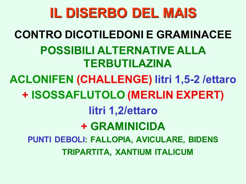 IL DISERBO DEL MAIS CONTRO DICOTILEDONI E GRAMINACEE POSSIBILI ALTERNATIVE ALLA TERBUTILAZINA ACLONIFEN (CHALLENGE) litri 1,5-2 /ettaro + ISOSSAFLUTOL