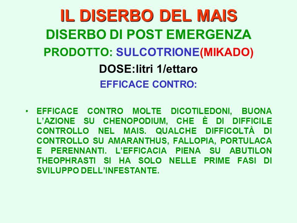 IL DISERBO DEL MAIS DISERBO DI POST EMERGENZA PRODOTTO: SULCOTRIONE(MIKADO) DOSE:litri 1/ettaro EFFICACE CONTRO: EFFICACE CONTRO MOLTE DICOTILEDONI, B