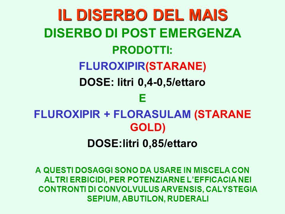 IL DISERBO DEL MAIS DISERBO DI POST EMERGENZA PRODOTTI: FLUROXIPIR(STARANE) DOSE: litri 0,4-0,5/ettaro E FLUROXIPIR + FLORASULAM (STARANE GOLD) DOSE:l