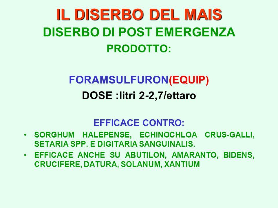 IL DISERBO DEL MAIS DISERBO DI POST EMERGENZA PRODOTTO: FORAMSULFURON(EQUIP) DOSE :litri 2-2,7/ettaro EFFICACE CONTRO: SORGHUM HALEPENSE, ECHINOCHLOA