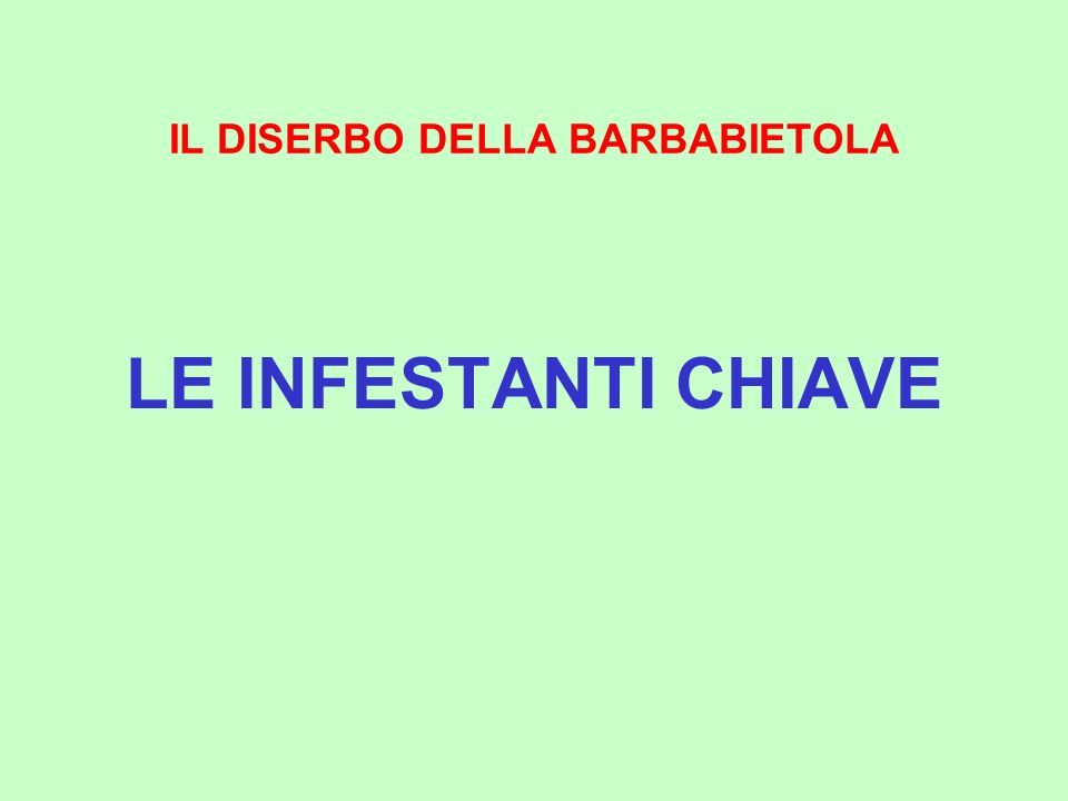 IL DISERBO DELLA BARBABIETOLA LE INFESTANTI CHIAVE