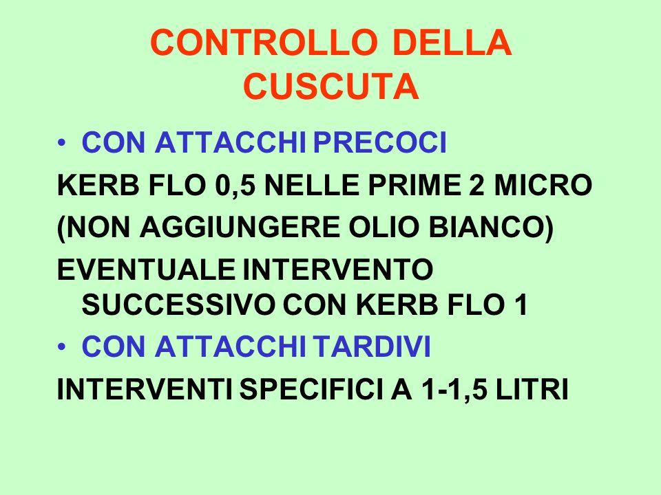 CONTROLLO DELLA CUSCUTA CON ATTACCHI PRECOCI KERB FLO 0,5 NELLE PRIME 2 MICRO (NON AGGIUNGERE OLIO BIANCO) EVENTUALE INTERVENTO SUCCESSIVO CON KERB FL