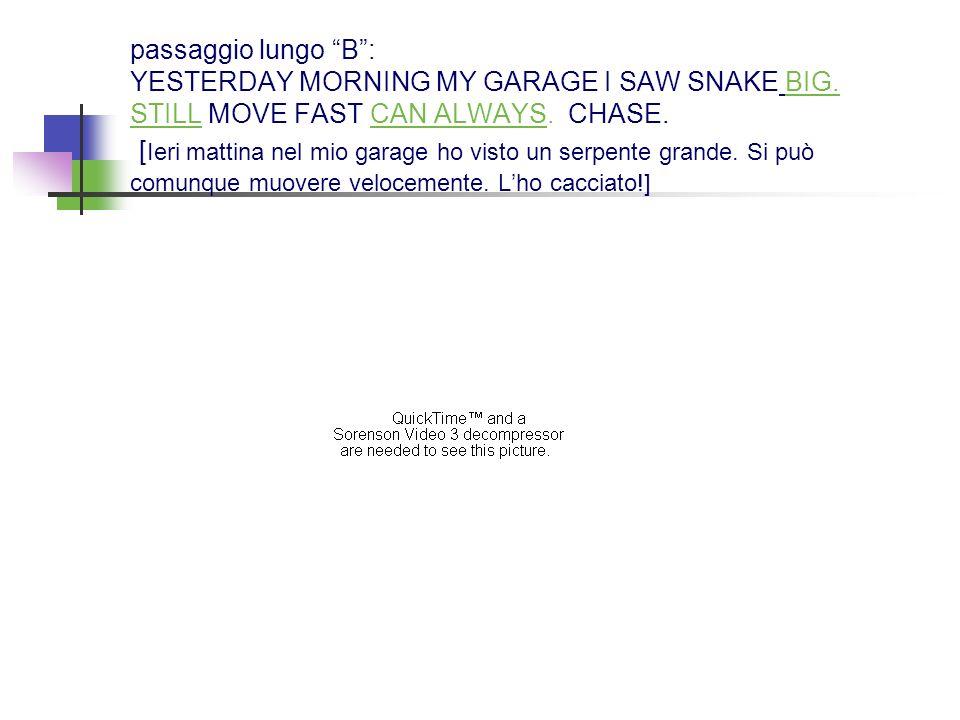 passaggio lungo B: YESTERDAY MORNING MY GARAGE I SAW SNAKE BIG. STILL MOVE FAST CAN ALWAYS. CHASE. [ Ieri mattina nel mio garage ho visto un serpente
