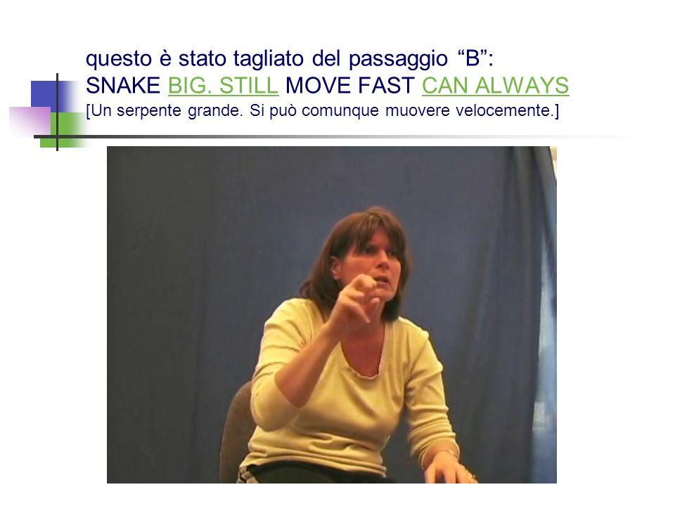 questo è stato tagliato del passaggio B: SNAKE BIG. STILL MOVE FAST CAN ALWAYS [Un serpente grande. Si può comunque muovere velocemente.]
