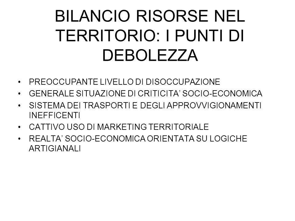 BILANCIO RISORSE NEL TERRITORIO: I PUNTI DI DEBOLEZZA PREOCCUPANTE LIVELLO DI DISOCCUPAZIONE GENERALE SITUAZIONE DI CRITICITA SOCIO-ECONOMICA SISTEMA