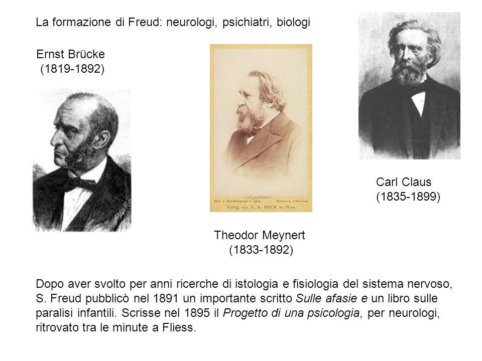 La formazione di Freud: neurologi, psichiatri, biologi Ernst Brücke (1819-1892) Theodor Meynert (1833-1892) Carl Claus (1835-1899) Dopo aver svolto pe