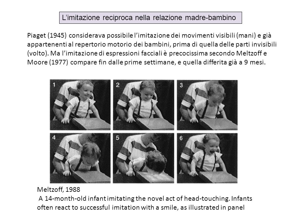 Meltzoff, 1988 A 14-month-old infant imitating the novel act of head-touching. Infants often react to successful imitation with a smile, as illustrate
