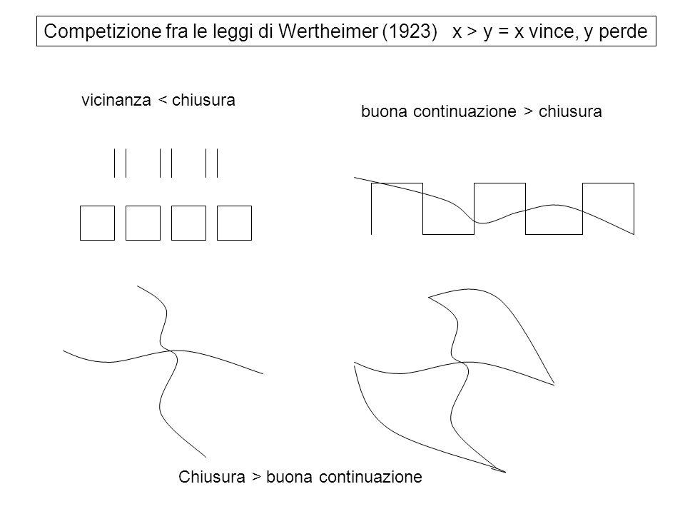 Competizione fra le leggi di Wertheimer (1923) x > y = x vince, y perde vicinanza < chiusura buona continuazione > chiusura Chiusura > buona continuaz
