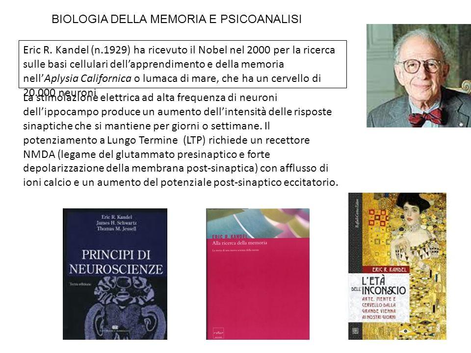 Eric R. Kandel (n.1929) ha ricevuto il Nobel nel 2000 per la ricerca sulle basi cellulari dellapprendimento e della memoria nellAplysia Californica o
