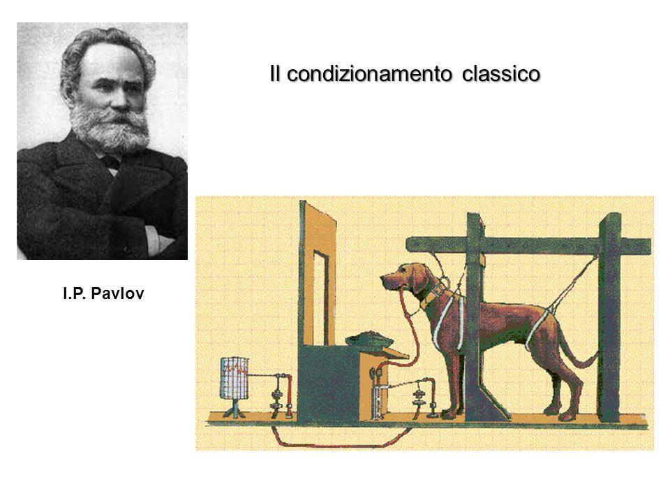 Il condizionamento classico I.P. Pavlov