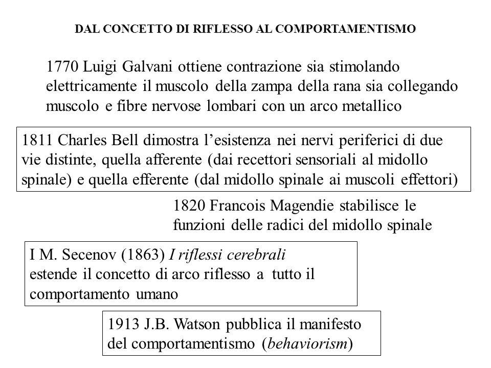 1811 Charles Bell dimostra lesistenza nei nervi periferici di due vie distinte, quella afferente (dai recettori sensoriali al midollo spinale) e quell