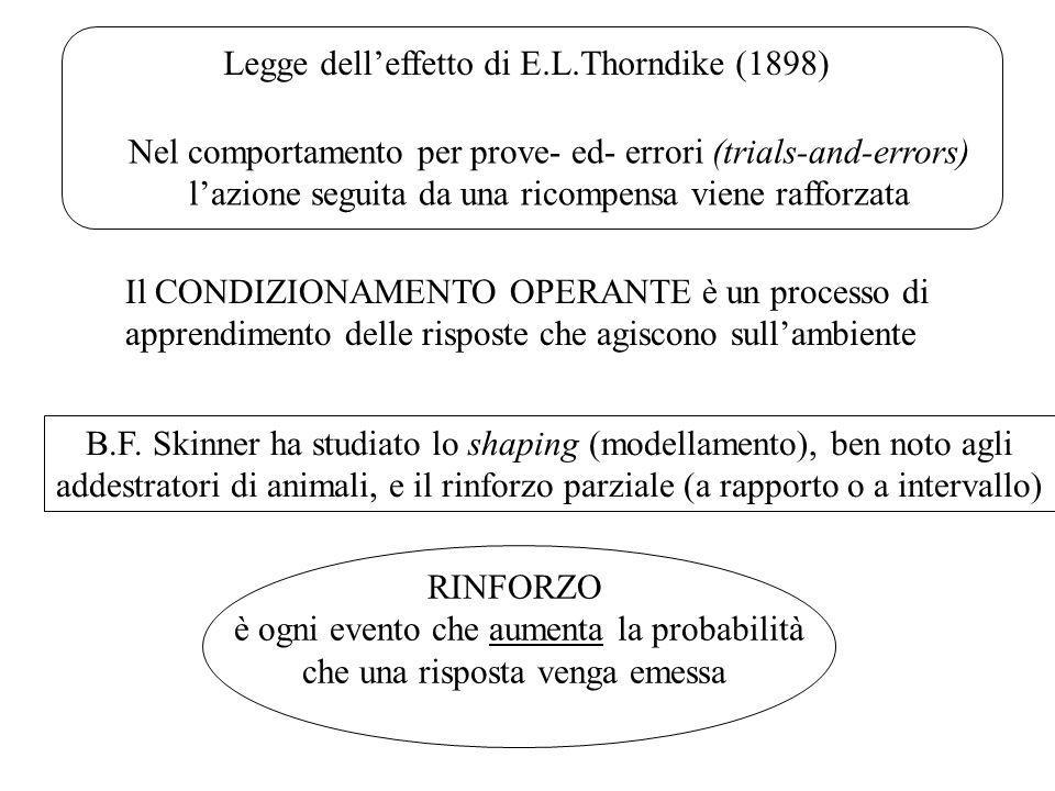 Legge delleffetto di E.L.Thorndike (1898) Nel comportamento per prove- ed- errori (trials-and-errors) lazione seguita da una ricompensa viene rafforza
