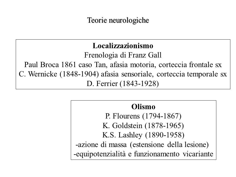 Localizzazionismo Frenologia di Franz Gall Paul Broca 1861 caso Tan, afasia motoria, corteccia frontale sx C. Wernicke (1848-1904) afasia sensoriale,