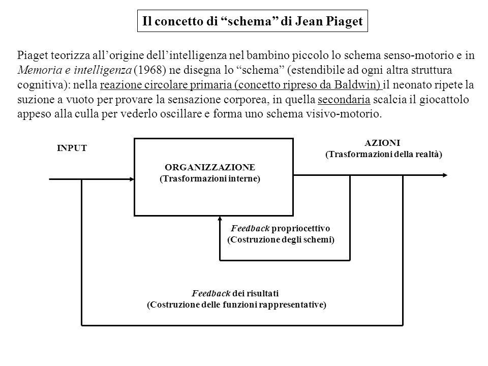 Il concetto di schema di Jean Piaget Piaget teorizza allorigine dellintelligenza nel bambino piccolo lo schema senso-motorio e in Memoria e intelligen