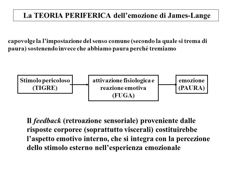 La TEORIA PERIFERICA dellemozione di James-Lange Stimolo pericoloso (TIGRE) attivazione fisiologica e reazione emotiva (FUGA) emozione (PAURA) capovol