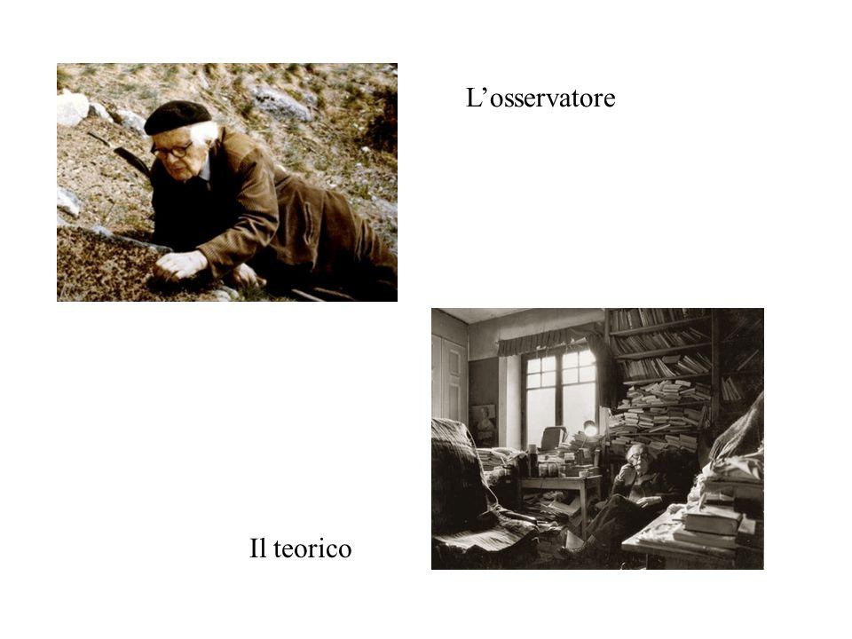 Losservatore Il teorico