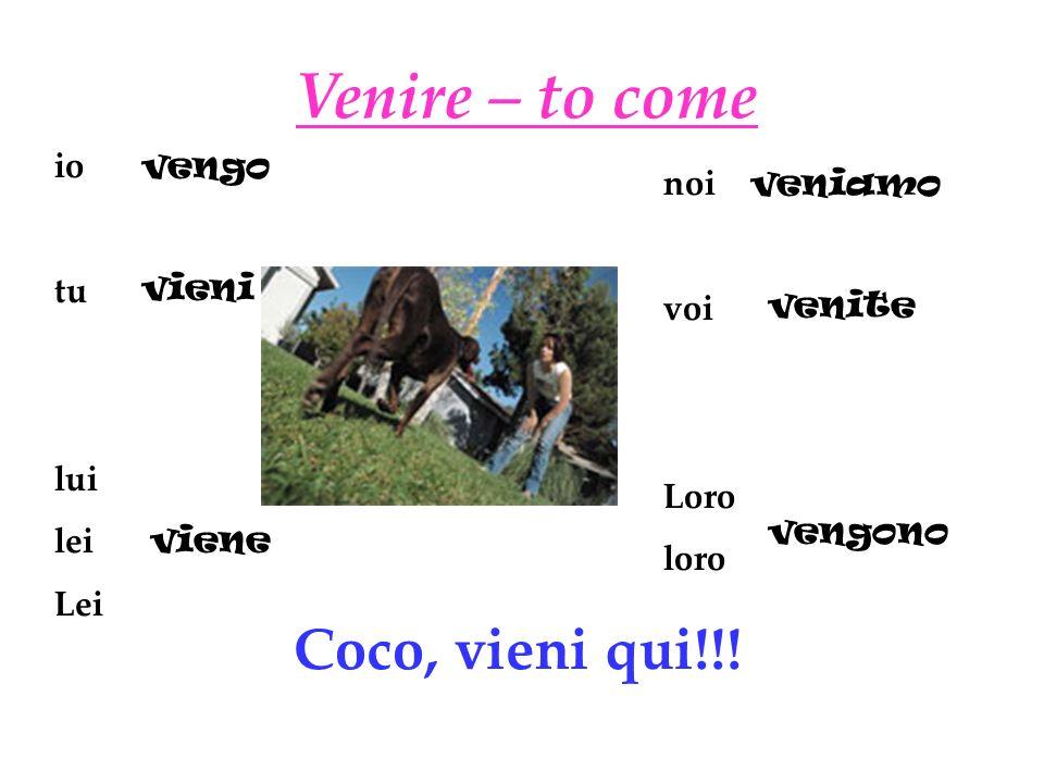 Venire – to come io tu lui lei Lei noi voi Loro loro vengo vieni viene veniamo venite vengono Coco, vieni qui!!!