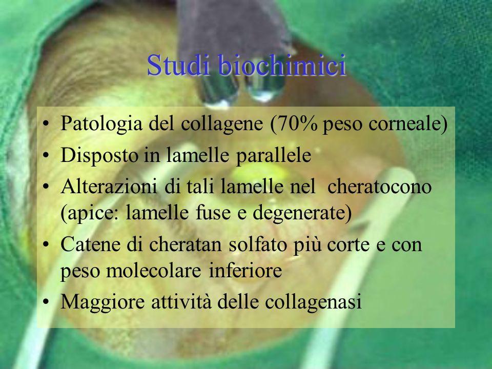 Studi biochimici Patologia del collagene (70% peso corneale) Disposto in lamelle parallele Alterazioni di tali lamelle nel cheratocono (apice: lamelle