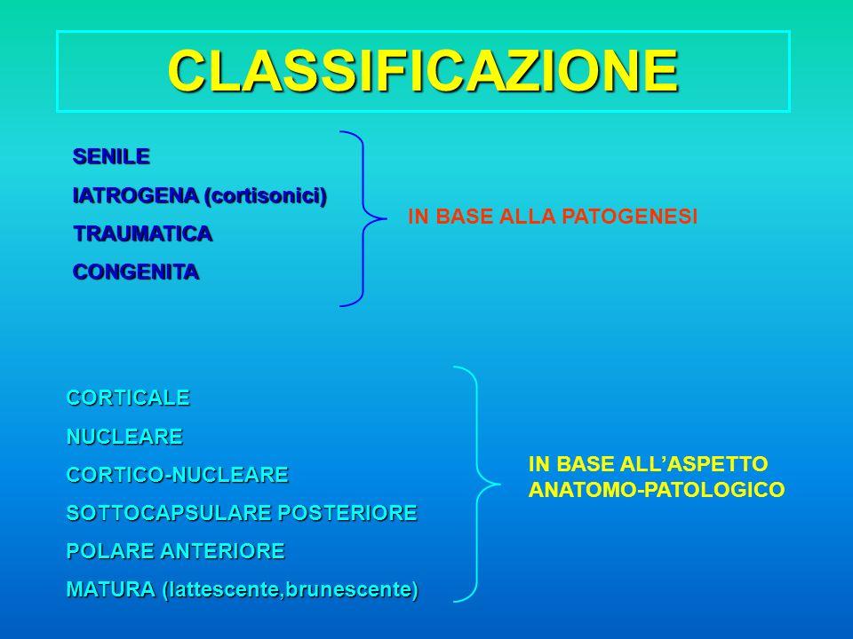CLASSIFICAZIONE SENILE IATROGENA (cortisonici) TRAUMATICACONGENITA IN BASE ALLA PATOGENESI CORTICALENUCLEARECORTICO-NUCLEARE SOTTOCAPSULARE POSTERIORE POLARE ANTERIORE MATURA (lattescente,brunescente) IN BASE ALLASPETTO ANATOMO-PATOLOGICO