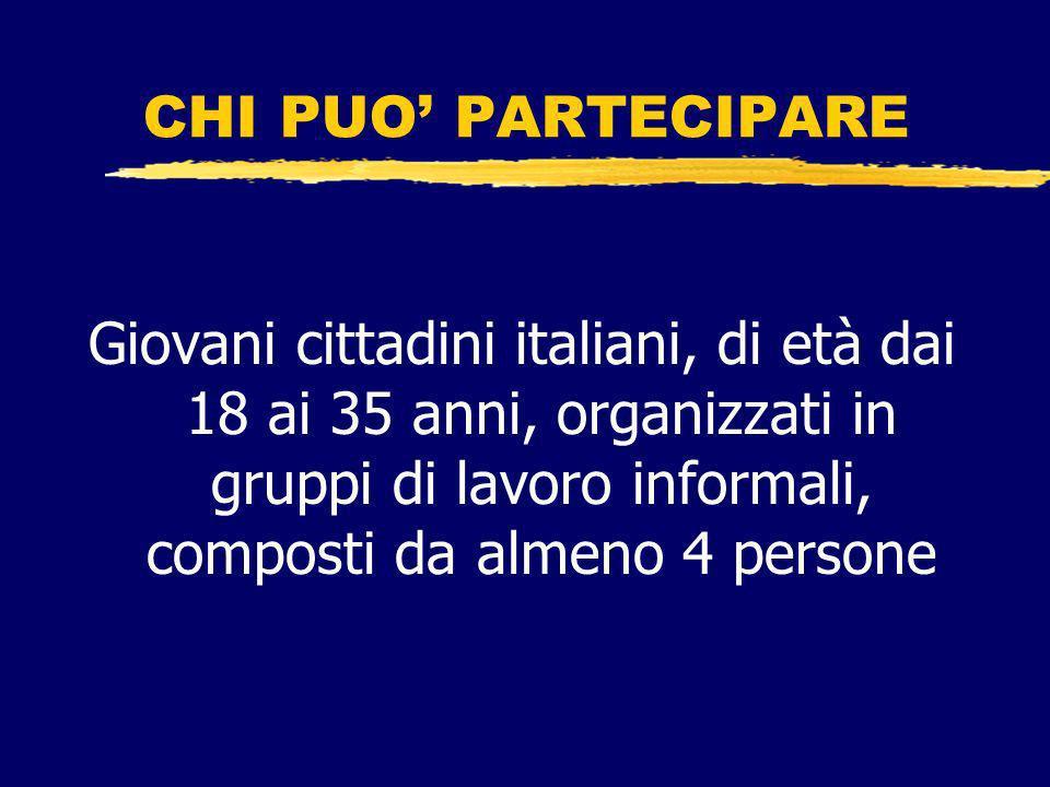 BUDGET DISPONIBILE PER IL CONCORSO (edizione 2007) 2.000.000 di euro sul Fondo nazionale per le politiche giovanili (ca.