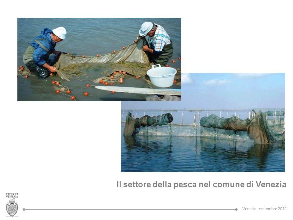 La Regione del Veneto svolge un ruolo di indirizzo e coordinamento nelle acque interne e marittime; sostiene la pesca e l acquacoltura utilizzando risorse comunitarie (FEP - Fondo Europeo per la Pesca) e statali; La Provincia di Venezia provvede alla: Tutela delle risorse idrobiologiche e della fauna ittica; Regolamentazione dellattività di pesca e acquacoltura nelle acque interne e marittime interne; Elaborazione della Carta Ittica e del Piano di Gestione delle Risorse Alieutiche Altre competenze specifiche sono affidate al Magistrato alle acque e alla Capitaneria di Porto, all Agenzia del Demanio.
