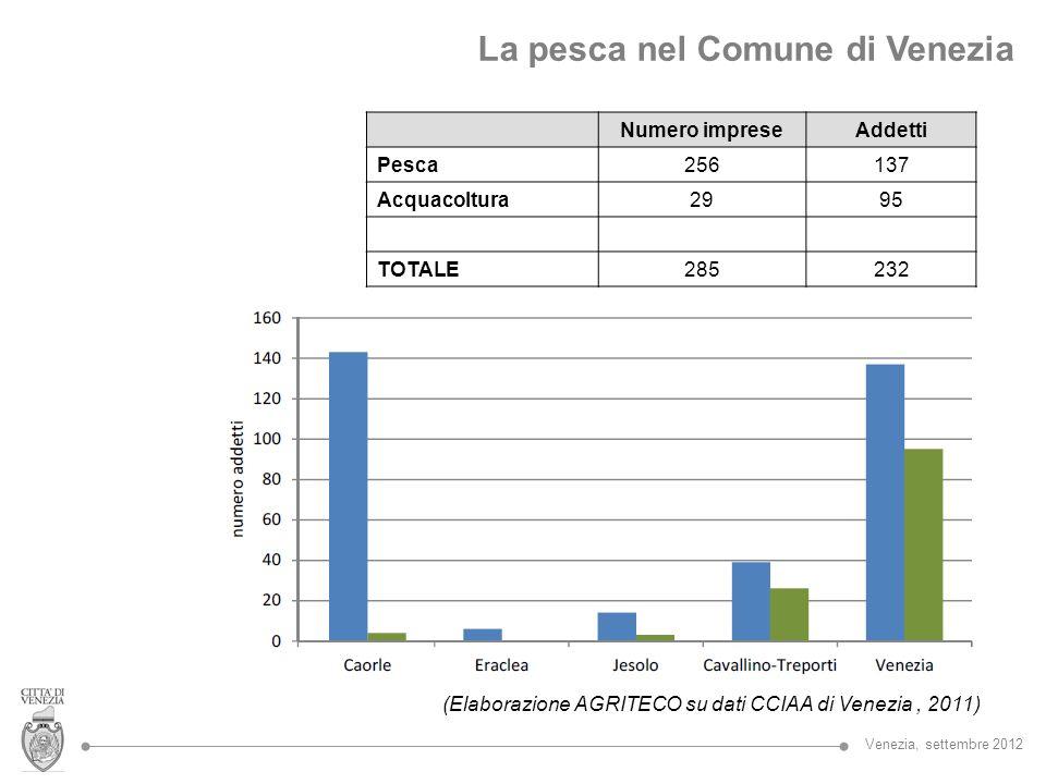 La pesca nel Comune di Venezia Numero impreseAddetti Pesca256137 Acquacoltura2995 TOTALE285232 (Elaborazione AGRITECO su dati CCIAA di Venezia, 2011)
