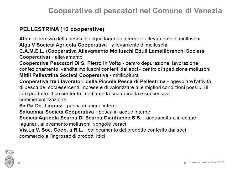 PELLESTRINA (10 cooperative) Alba - esercizio della pesca in acque lagunari interne e allevamento di molluschi Alga V Società Agricola Cooperativa - a