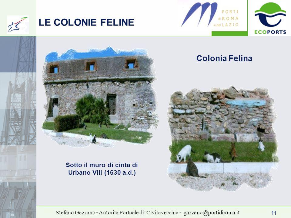 11 Stefano Gazzano - Autorità Portuale di Civitavecchia - gazzano@portidiroma.it LE COLONIE FELINE Sotto il muro di cinta di Urbano VIII (1630 a.d.) C