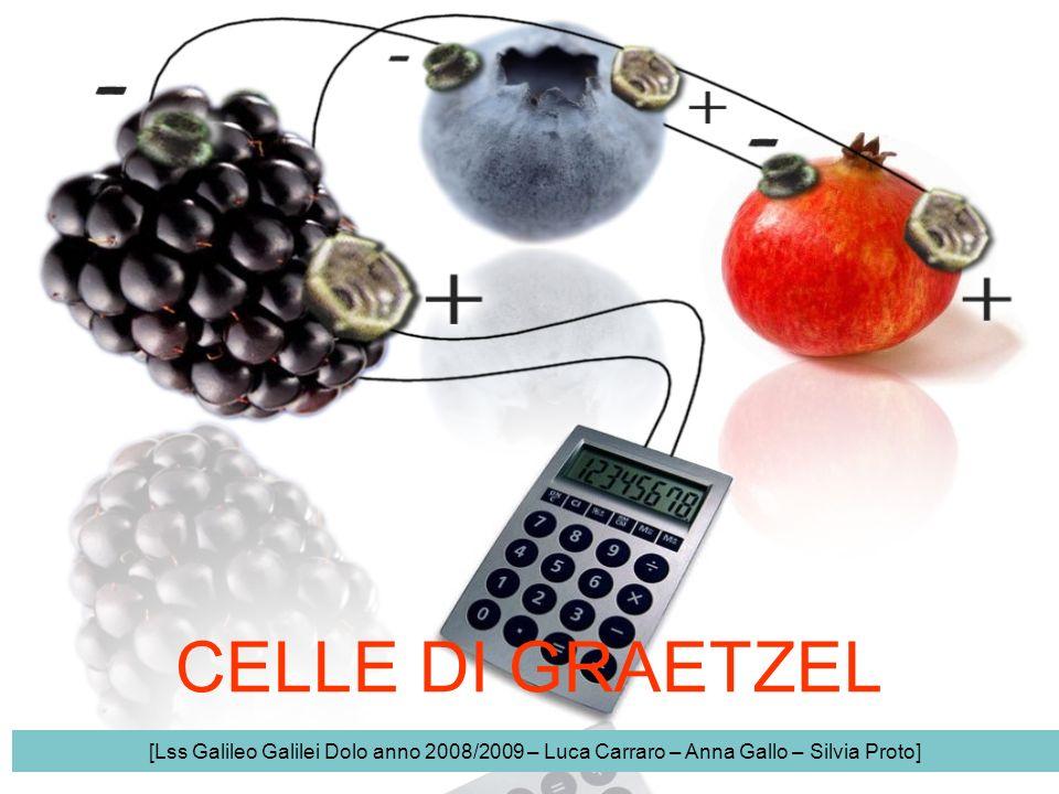 CELLE DI GRAETZEL [Lss Galileo Galilei Dolo anno 2008/2009 – Luca Carraro – Anna Gallo – Silvia Proto]