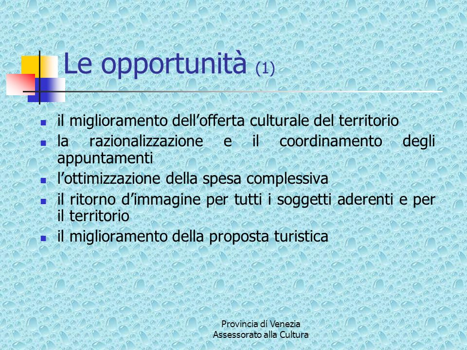 Le opportunità (2) il miglioramento della proposta turistica maggiore incisività e copertura della comunicazione maggiore trasparenza e condivisione della progettazione culturale riconoscimento dellautonomia dei Comuni in un progetto culturale di area vasta e di maggiore attrattività Provincia di Venezia Assessorato alla Cultura