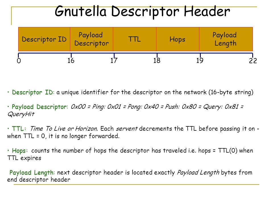 Descriptor ID Gnutella Descriptor Header Payload Descriptor TTLHops Payload Length 0 17161819 22 Descriptor ID: a unique identifier for the descriptor