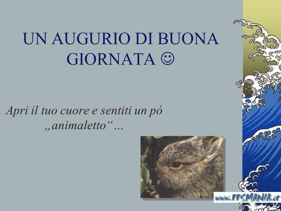 UN AUGURIO DI BUONA GIORNATA Apri il tuo cuore e sentiti un pó animaletto… www.nardonardo.it