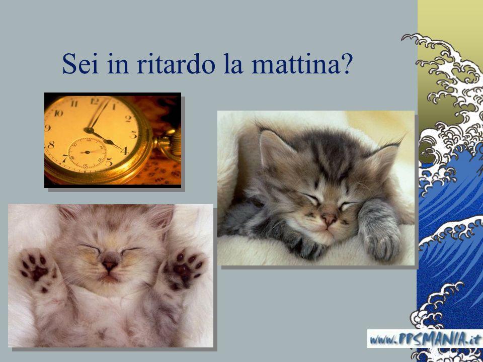 Sei in ritardo la mattina? www.nardonardo.it