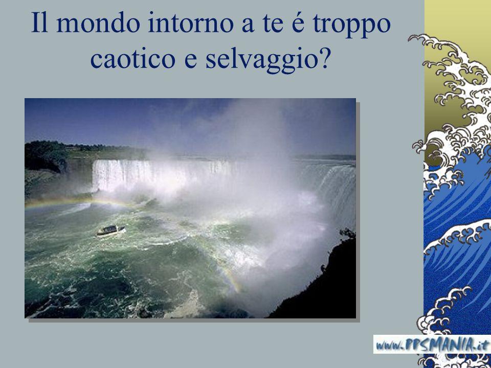 Il mondo intorno a te é troppo caotico e selvaggio? www.nardonardo.it