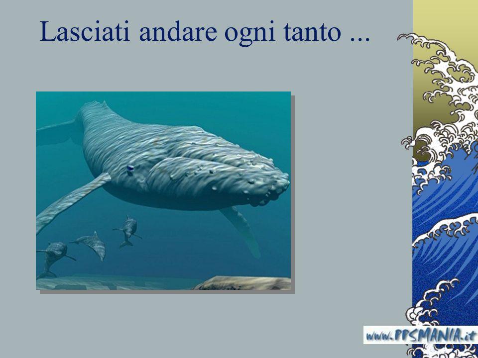 Lasciati andare ogni tanto... www.nardonardo.it