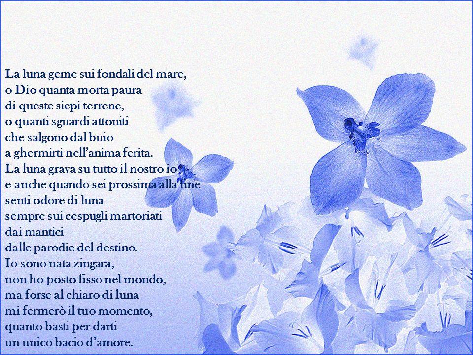 La mia poesia è alacre come il fuoco trascorre tra le mie dita come un rosario Non prego perché sono un poeta della sventura che tace, a volte, le dog