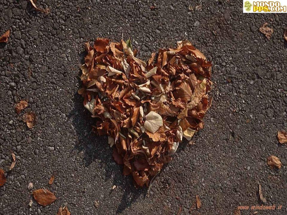 Quando il battito del cuore supera le ombre del passato l'amore potrà trionfare sul destino. (Nicholas Sparks)