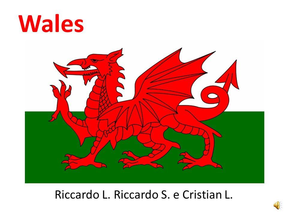 Wales Riccardo L. Riccardo S. e Cristian L.