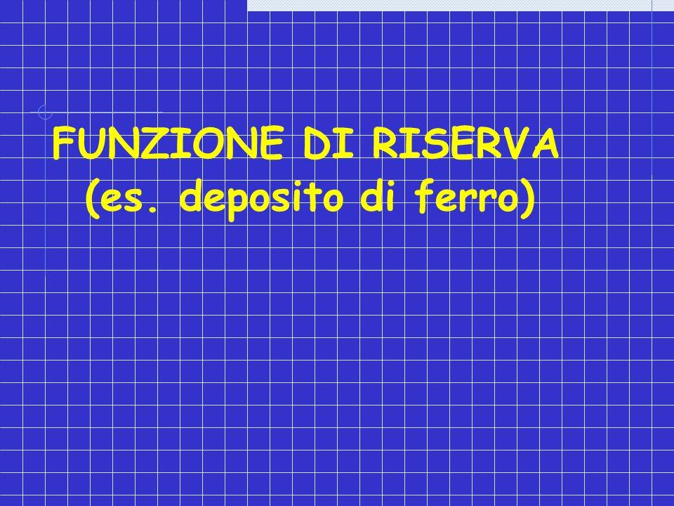 FUNZIONE DI RISERVA (es. deposito di ferro)