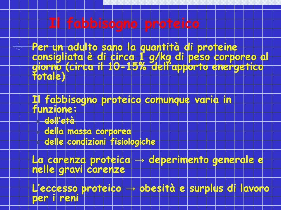 Il fabbisogno proteico Per un adulto sano la quantità di proteine consigliata è di circa 1 g/kg di peso corporeo al giorno (circa il 10-15% dellapport