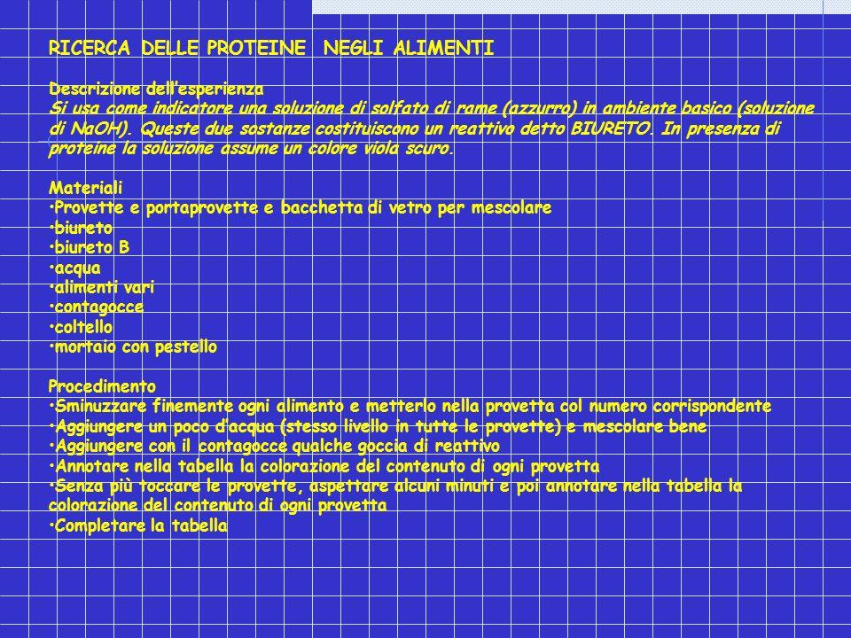 RICERCA DELLE PROTEINE NEGLI ALIMENTI Descrizione dellesperienza Si usa come indicatore una soluzione di solfato di rame (azzurro) in ambiente basico