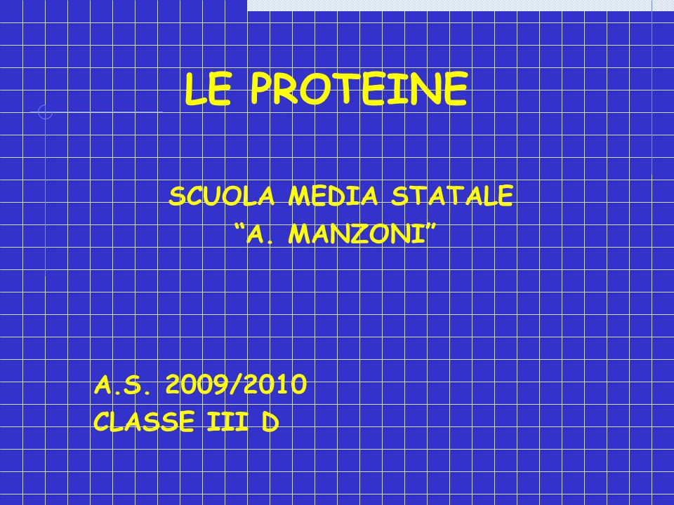 SCUOLA MEDIA STATALE A. MANZONI A.S. 2009/2010 CLASSE III D