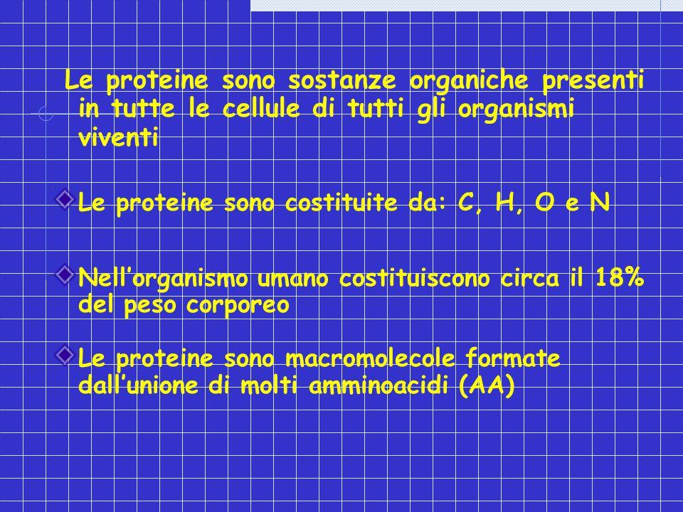 Le proteine sono sostanze organiche presenti in tutte le cellule di tutti gli organismi viventi Le proteine sono costituite da: C, H, O e N Nellorgani