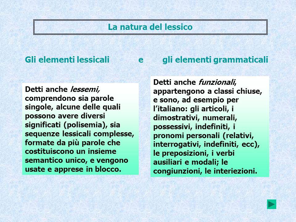 Detti anche lessemi, comprendono sia parole singole, alcune delle quali possono avere diversi significati (polisemia), sia sequenze lessicali compless