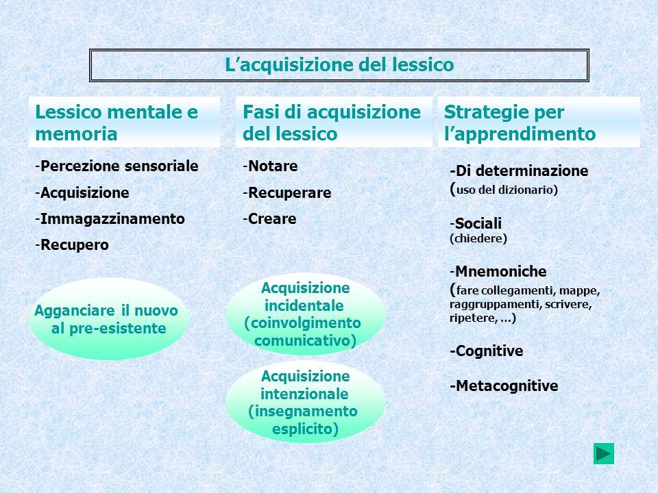 -Percezione sensoriale -Acquisizione -Immagazzinamento -Recupero Lessico mentale e memoria Strategie per lapprendimento Fasi di acquisizione del lessi